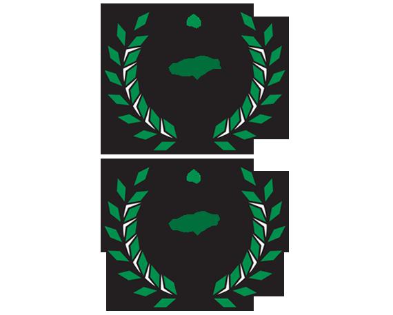 Best of 2015 acupuncturist award